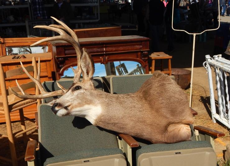 deerhead2